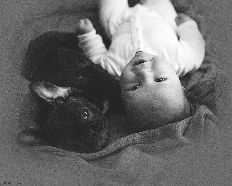 Родившиеся в один день малыш и щенок стали друзьями