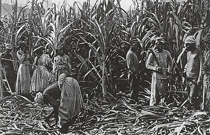 История работорговли: от древнейших времен до наших дней