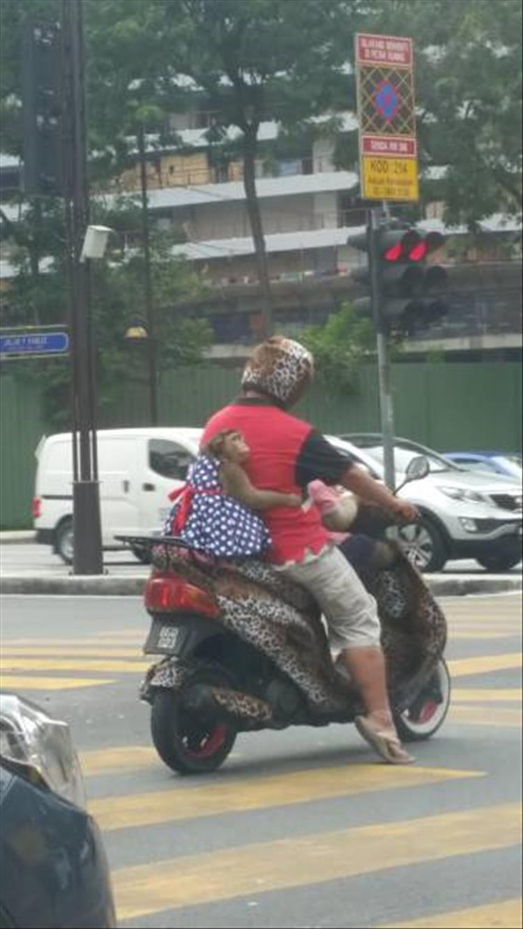 Чего только не увидишь на дорогах разных стран