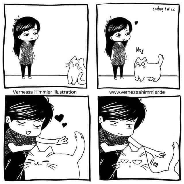 Комиксы о том, как живётся человеку, у которого есть кот
