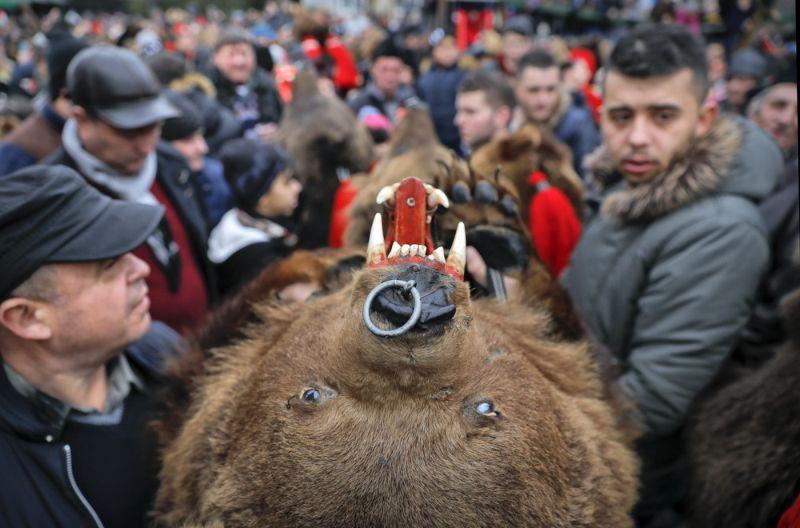 Румынский новогодний обряд с толпой медведей