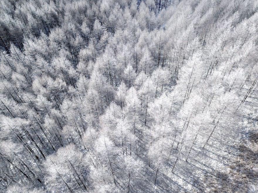 Сказочно красивая зима в Японии