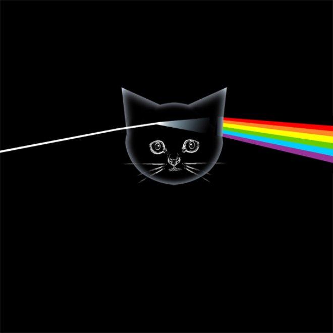 Котята на обложках культовых альбомов