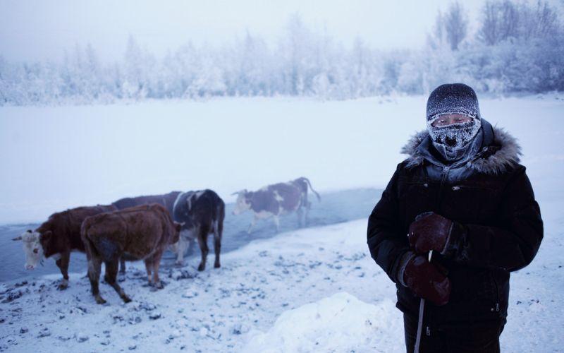 Суровое село Оймякон, где температура опускается до -50C