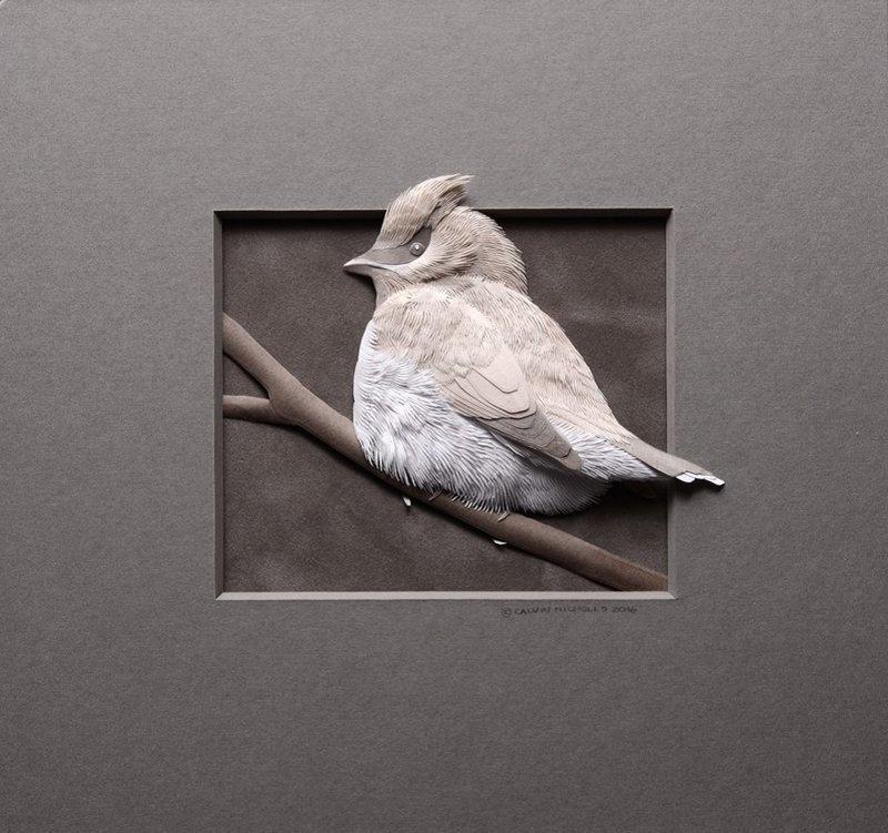 Трёхмерные бумажные картины от Келвина Николлса