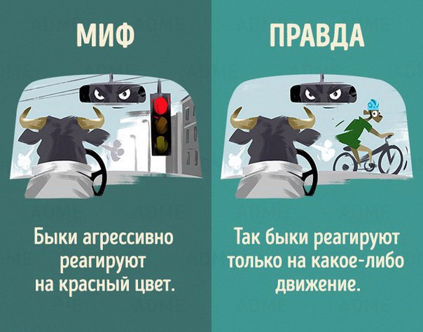 Несправедливые сравнения между животными и людьми