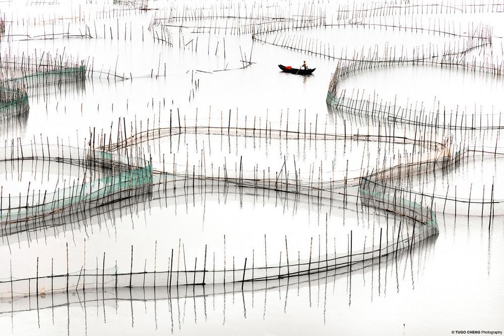 Красота китайской аквакультуры в минималистичных фотографиях
