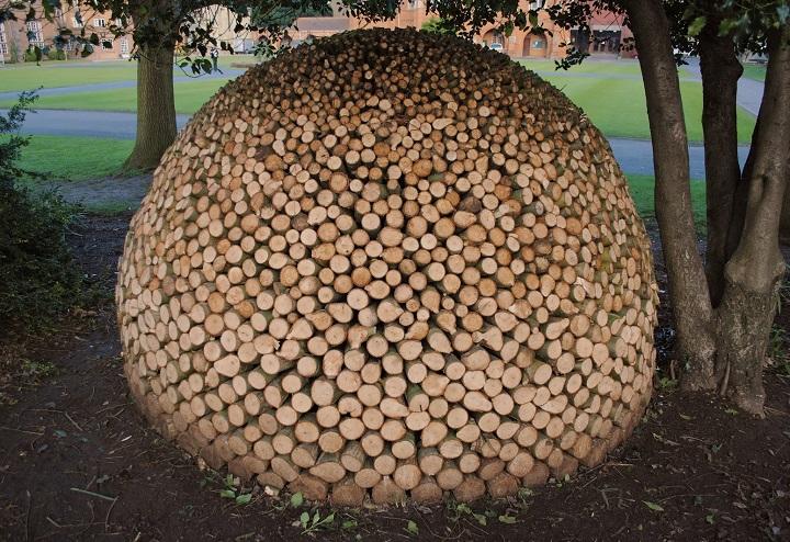 Настоящий художник может творить из дров