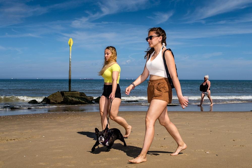 Пляжная жизнь в Нидерландах
