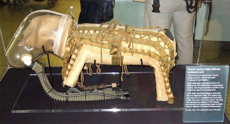 Советский костюм для собаки-космонавта
