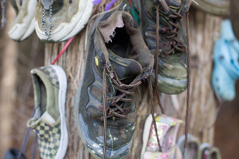 Таинственный обувной лес