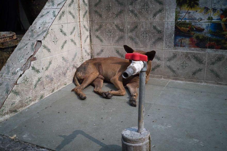 Удачные уличные снимки от Пау Бускато