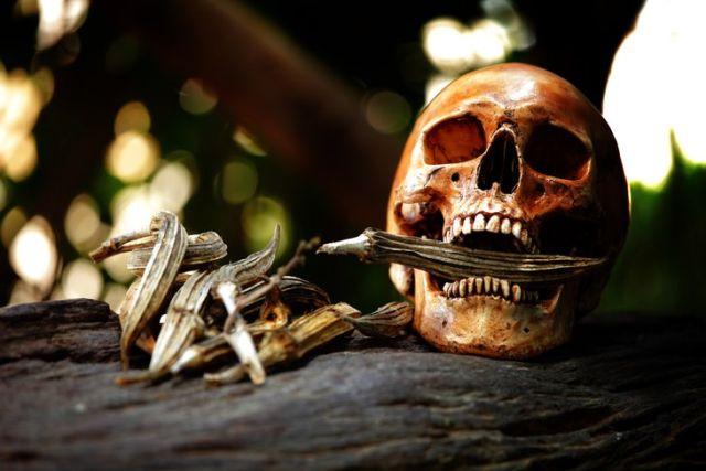 Мировые традиции захоронения