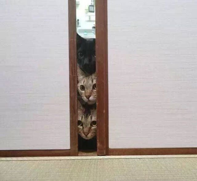 Когда что-то видишь или делаешь впервые
