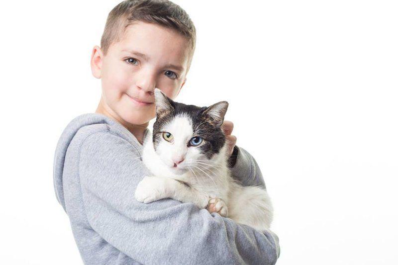 Мальчик с заячьей губой и разноцветными глазами нашел котенка-близнеца