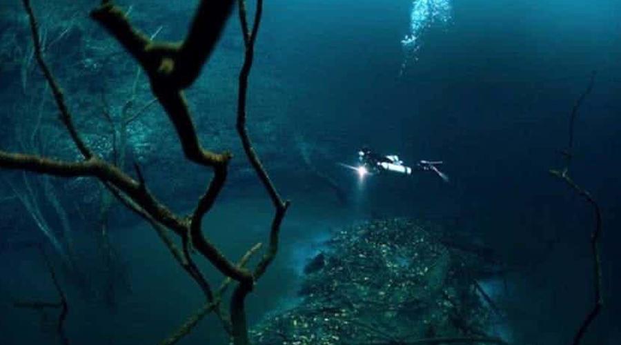 Удивительные находки с глубин