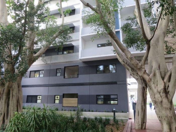 Деревья, которые стали неотъемлемой частью зданий