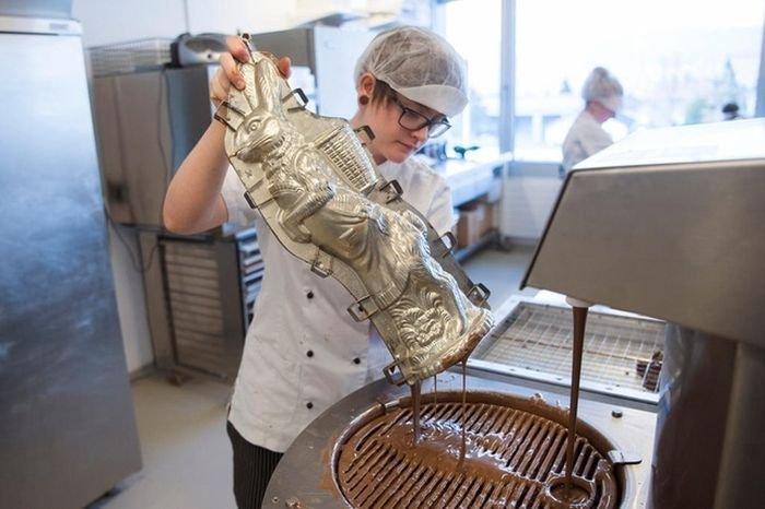 Как делают шоколадных зайцев