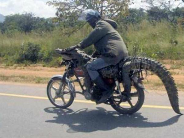 13 удивительных фото из Африки