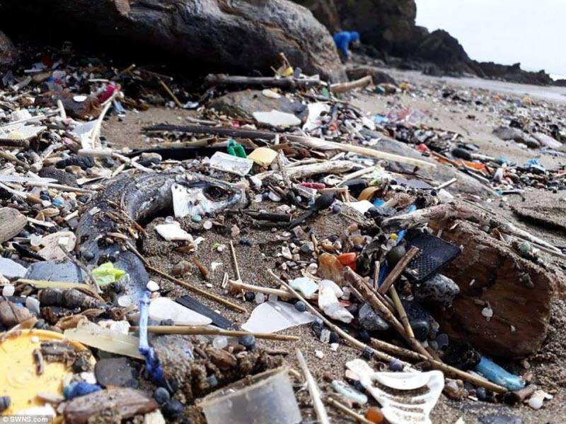 Топовый английский пляж для серферов утопает в мусоре