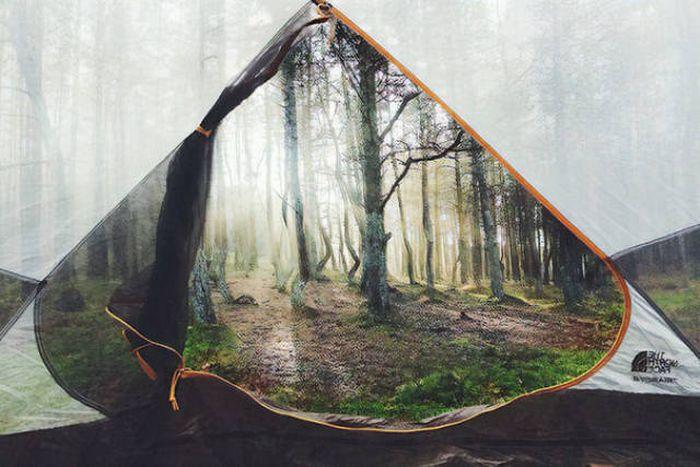 Внезапные оптические иллюзии на фото