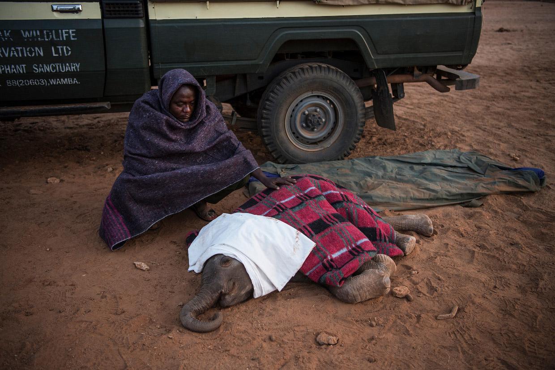 Победители конкурса фоторепортеров World Press Photo 2018