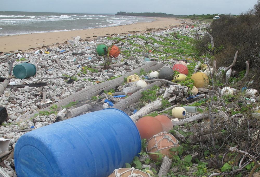 Пластмассовое загрязненные побережья Австралии