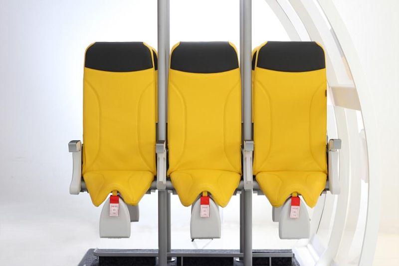 В самолетах появятся стоячие места