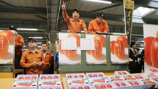 Шокирующая цена на премиальные японские манго
