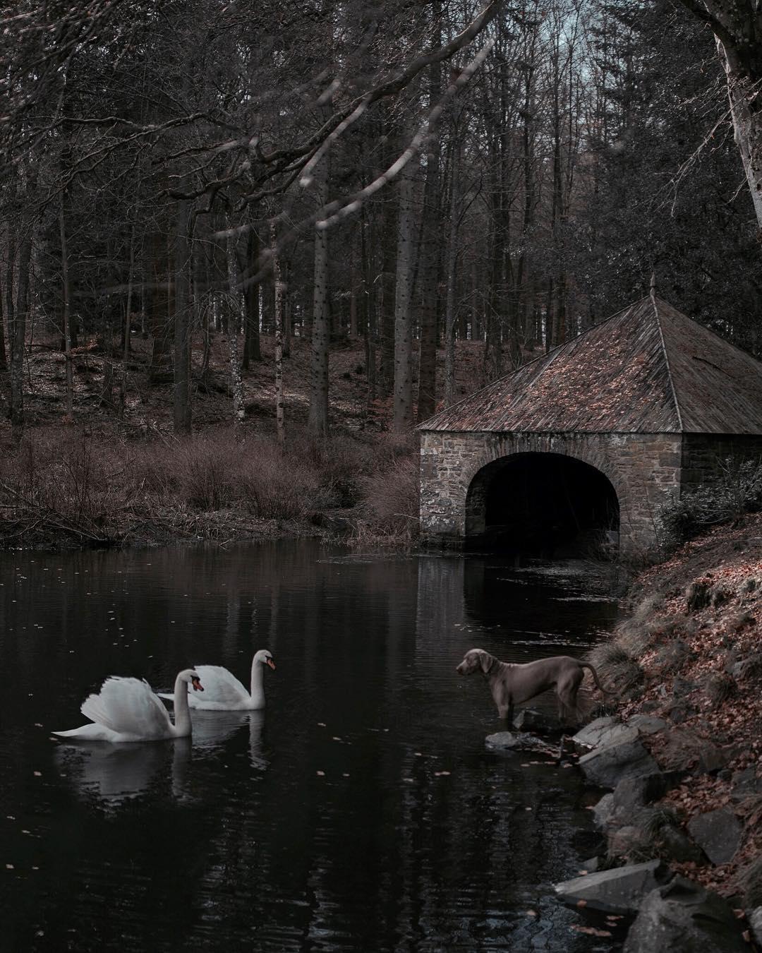 Таинственные пейзажи и приключения Франа Марта