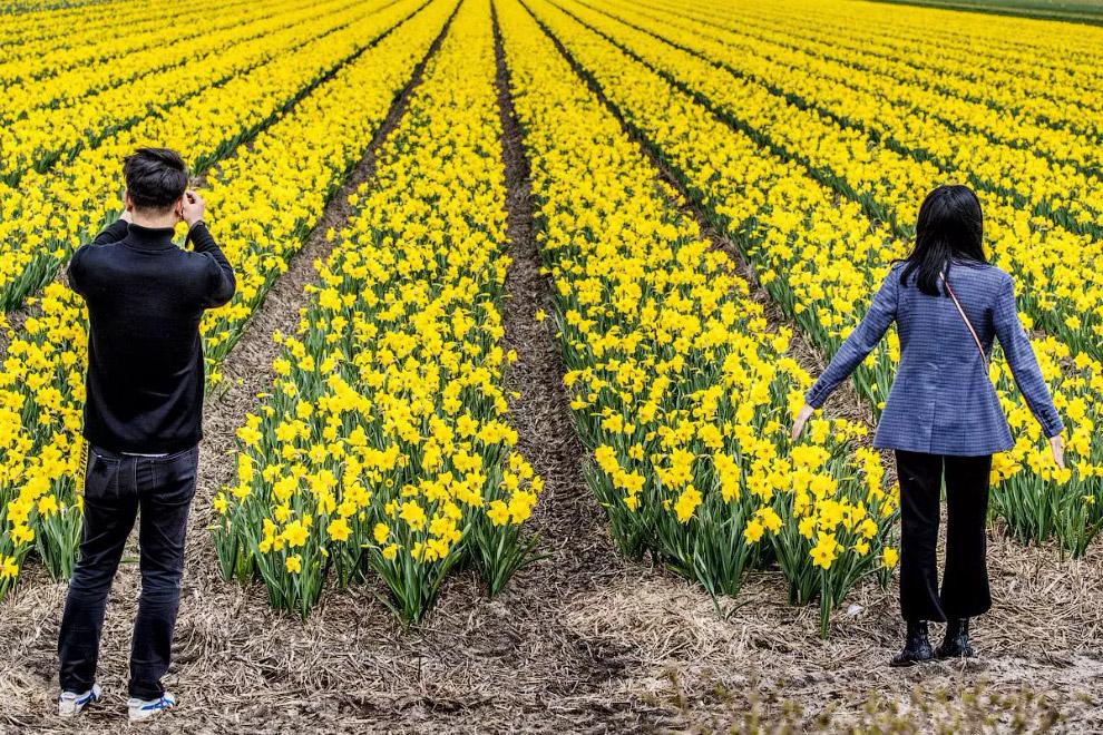 Фотографии весны во всем мире