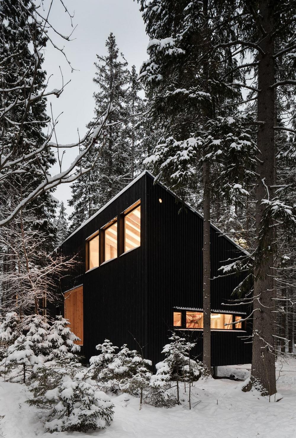 Дом для двух художников в Ленинградской области