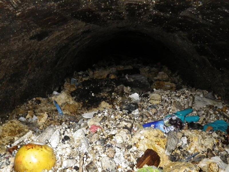 Поразительные находки в канализации