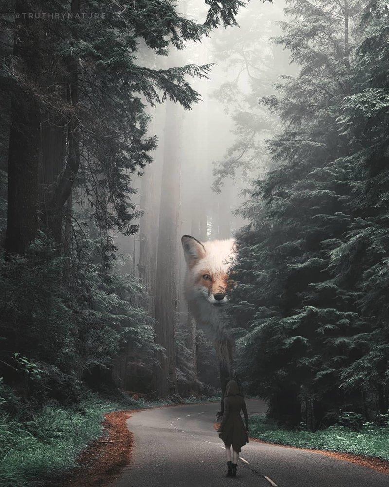 Земля, захваченная гигантскими животными