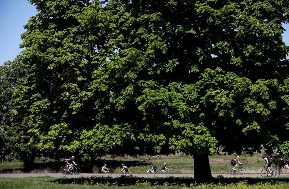 Традиционный фестиваль Jack In The Green в Великобритании