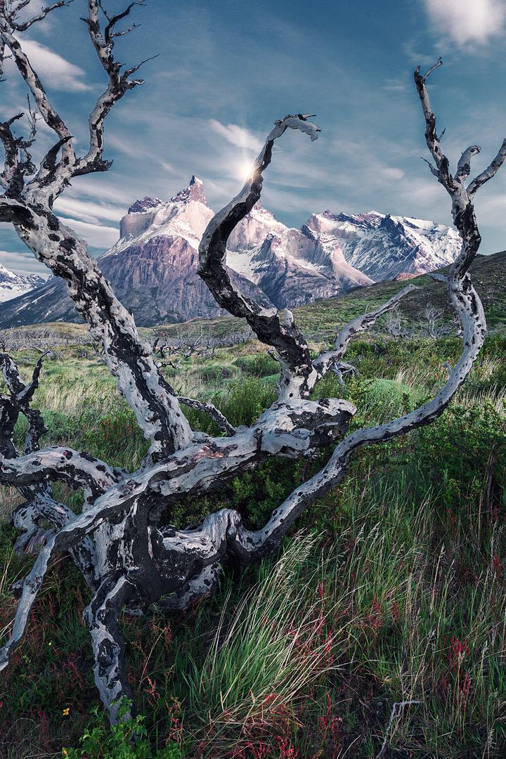Красоты Патагонии на снимках фотографа Лукаса Фурлана