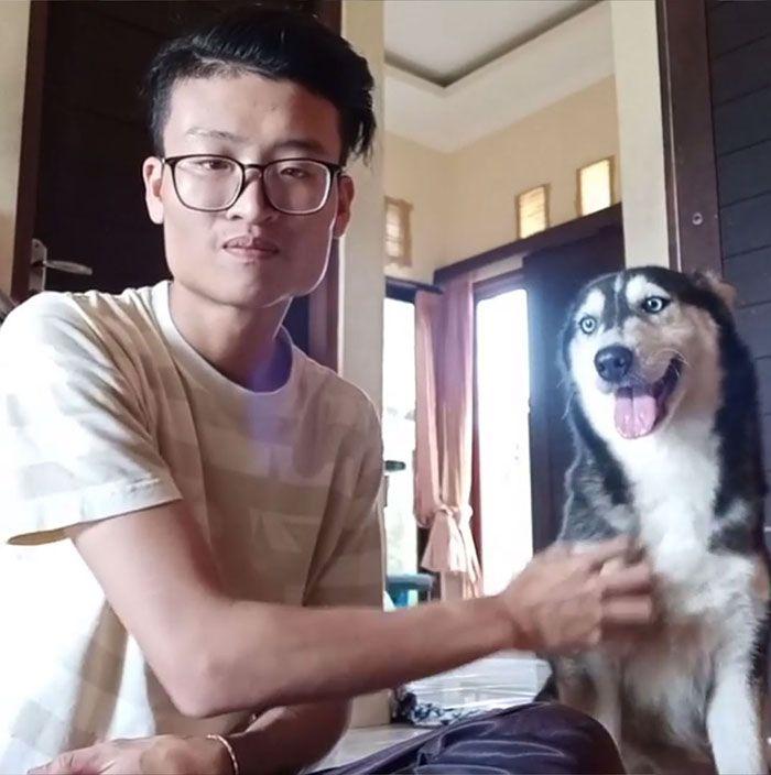 Парень выходил истощенную собаку и теперь в ней можно узнать хаски