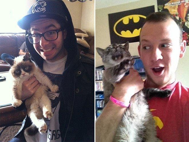 15 фото котиков, которые не любят обнимашки