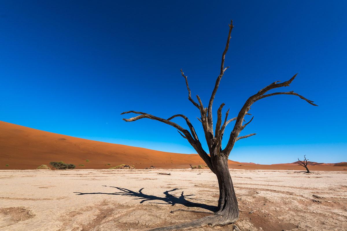 Намиб - древнейшая пустыня мира