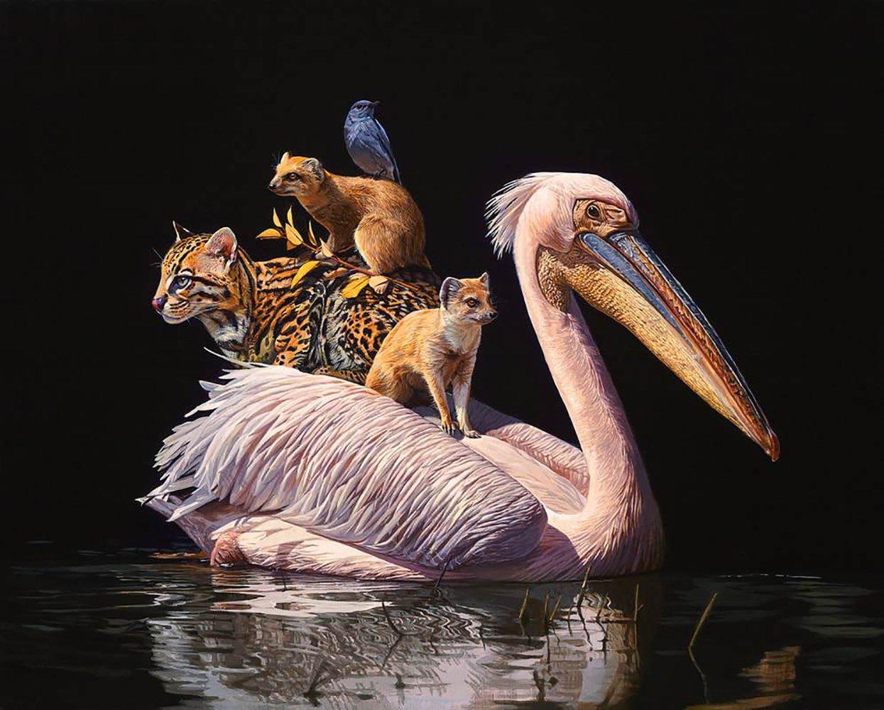 Гиперреалистичные рисунки животных от Лизы Эриксон