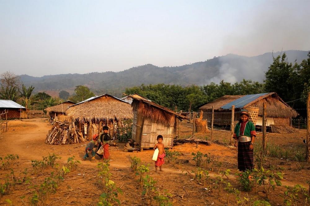 Крестьяне из Мьянмы переходят с выращивания маков на шелк