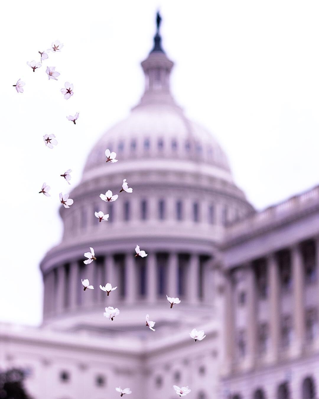 США на снимках Зака Левковича