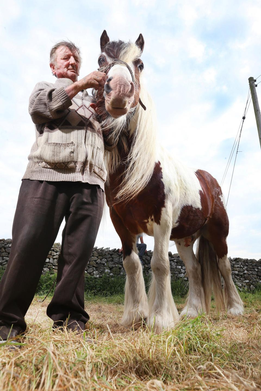 Тысячи конных экипажей начали путь на ярмарку лошадей Эпплби