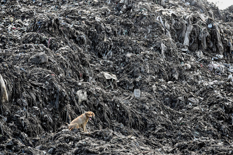 Это наш пластиковый мир