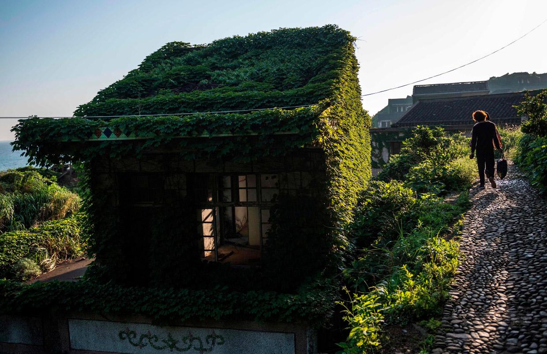Остров-призрак Шэншань медленно поглощается природой