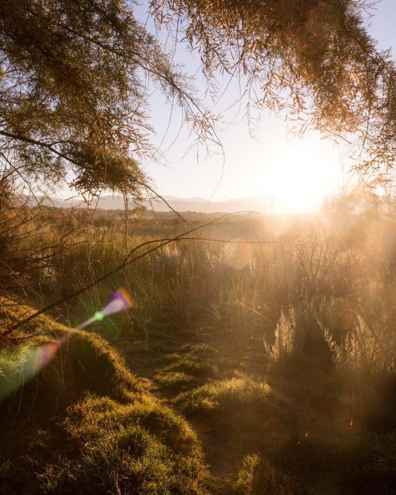 Фото рассвета солнца — лучшего времени суток