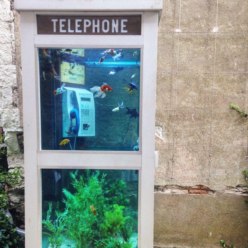 Бассейны из старых авто, аквариумы из телефонных будок