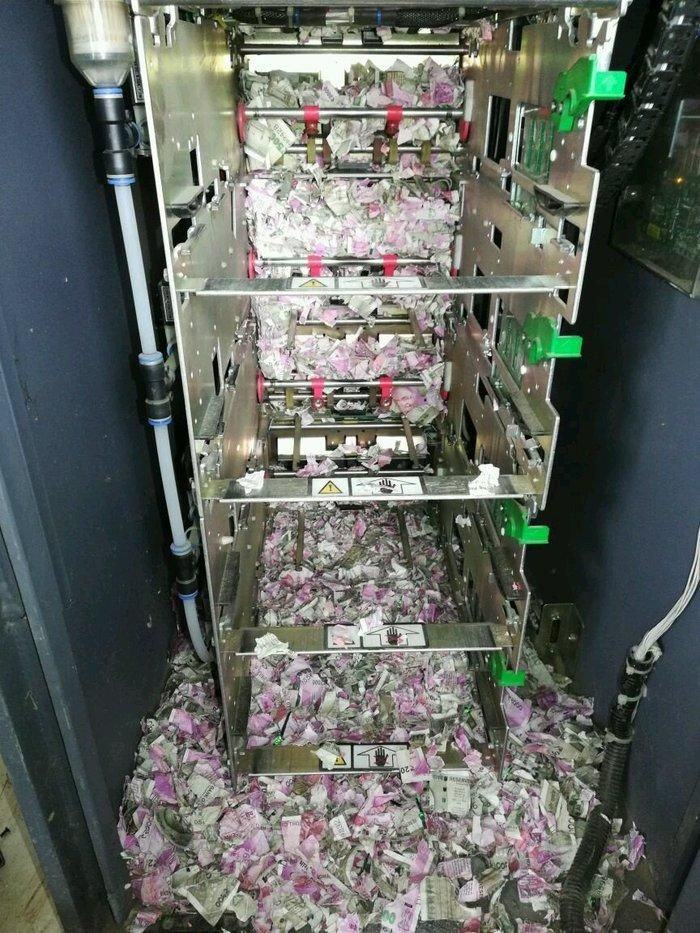 В Индии крысы сгрызли более миллиона рупий