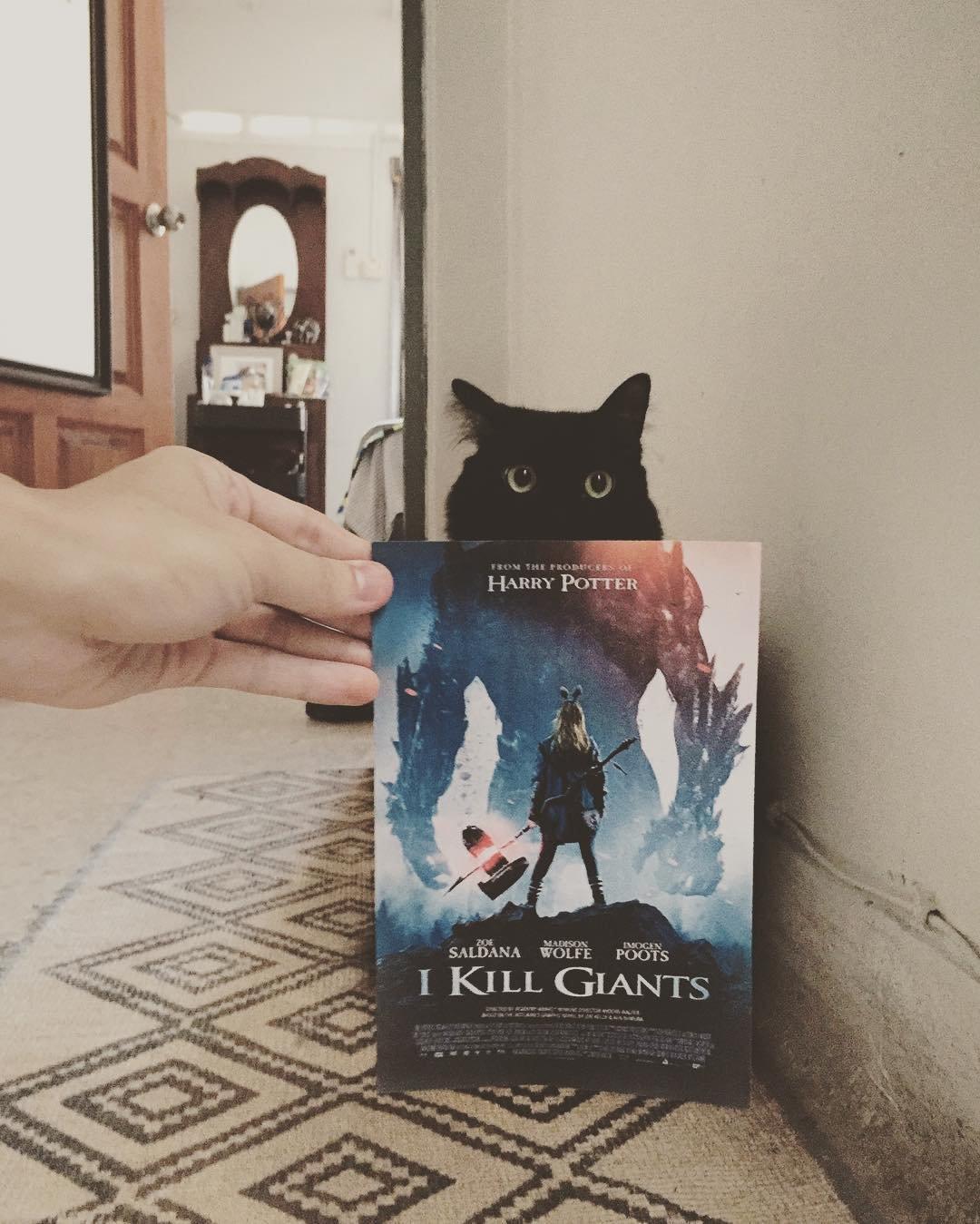 Постеры к фильмам с участием кошек и собак