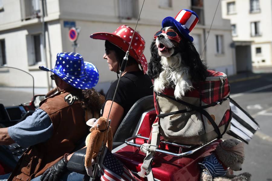 Американский фестиваль во Франции